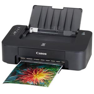 Canon PIXMA TS202 printer