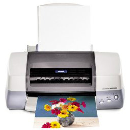 Epson Stylus Color 890 printer
